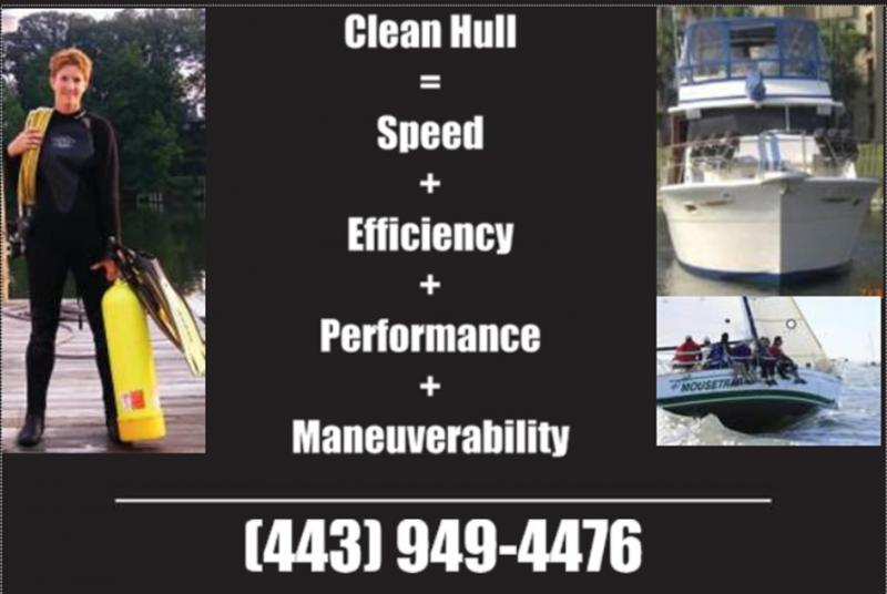Anne Arundel Dive Services, Hull cleaning, Sailboat, Powerboat,